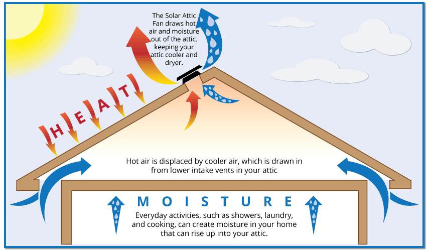 Roof Venting For Your Home